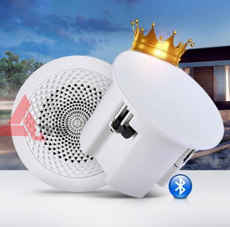 Loa âm trần bluetooth 30W cao cấp. chuyên dùng nghe nhạc cho cafe , căn hộ , nhà hàng tphcm