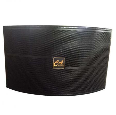 Loa CAsound K 510