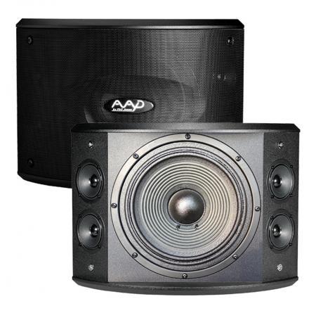 Loa karaoke AAD PRO10