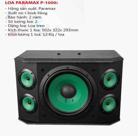 Loa karaoke paramax P-1000