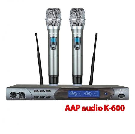 Micro AAP audio K600