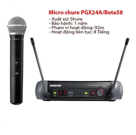 Micro PGX24A/BETA 58