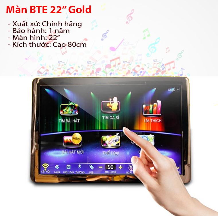 Màn hình cảm ứng BTE 22inch Gold